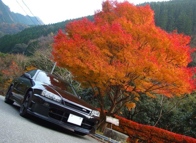 SKYLINE'10_gokanosyo (1).jpg