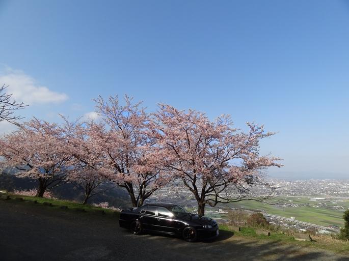 SKYLINE'12_sakura(2).jpg