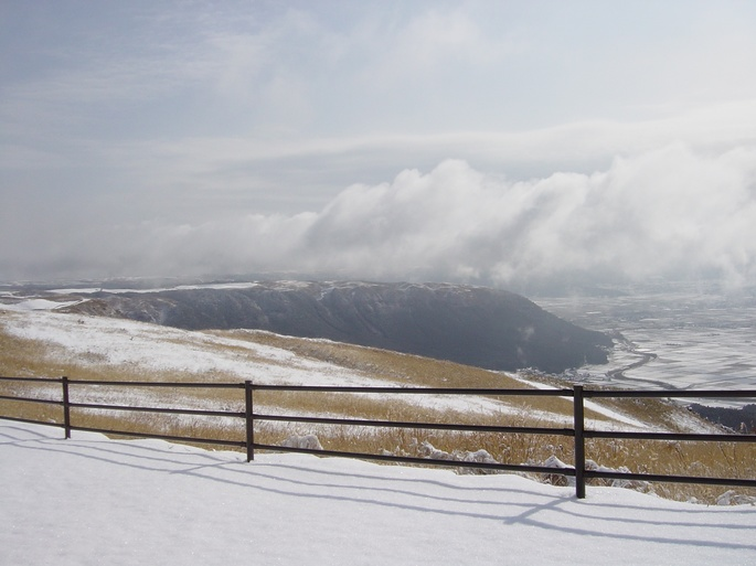 snow daikanbou