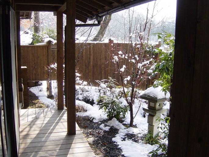snow garden2.