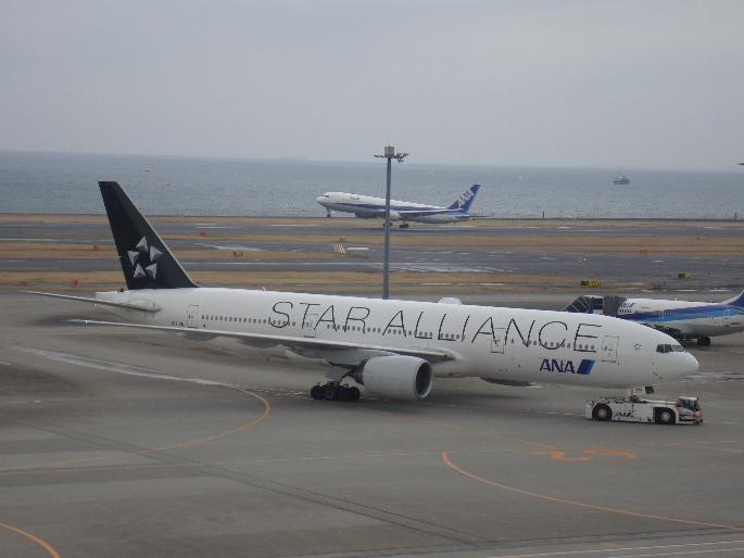 star alliance.JPG