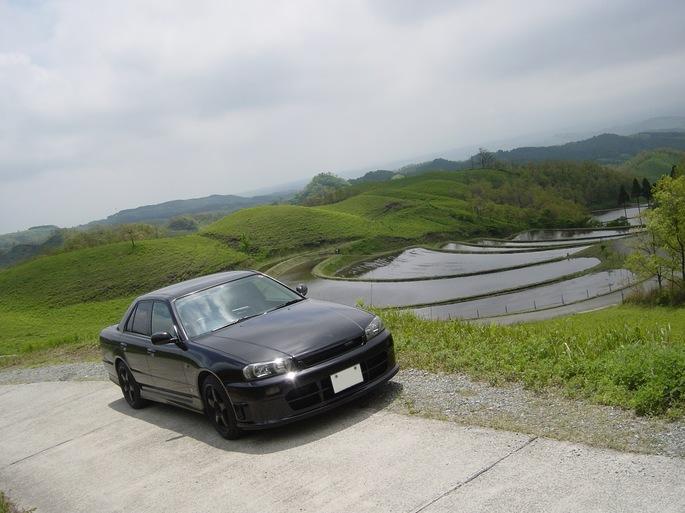 SKYLINE_fan-rice field.jpg